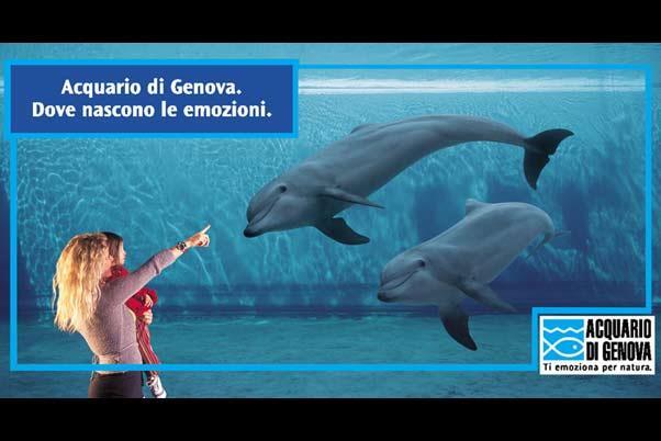 hotel vicino acquario di genova - acquario di genova - Pacchetti Soggiorno Acquario Di Genova